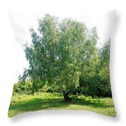 The Old Birch Tree Throw Pillow