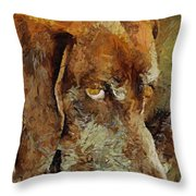 The Old Boy Throw Pillow