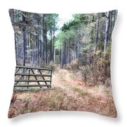 The Old Deer Gate Throw Pillow