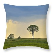 The Old Elm Throw Pillow