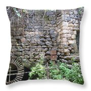 The Old Flour Mill At Tel Dan Throw Pillow