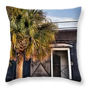 The Old Fort-color Throw Pillow