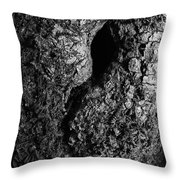The Old Knot  Throw Pillow