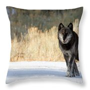 The Old Man Throw Pillow