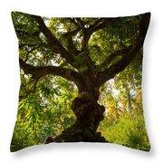 The Old Mango Tree Throw Pillow