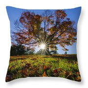 The Old Maple Throw Pillow