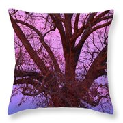 The Old Oak Throw Pillow