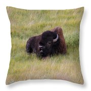 The Old One Throw Pillow
