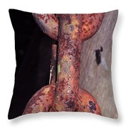 The Old Rusty Chain Throw Pillow