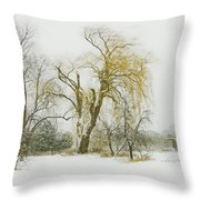The Old Shack Throw Pillow