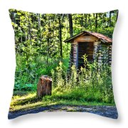 The Old Shed Throw Pillow by Cathy  Beharriell