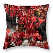 The Old Shed Throw Pillow by John Edwards