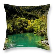 The Old Swimmin' Hole Throw Pillow