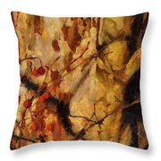 The Old Sycamore Tree Throw Pillow