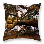 The Old Tree At The Ashley River In Charleston Throw Pillow by Susanne Van Hulst
