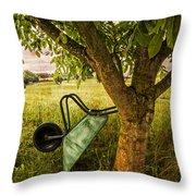 The Old Wheelbarrow Throw Pillow