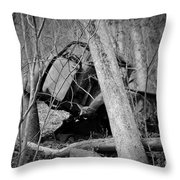 The Old Wreck Throw Pillow