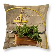 The Old Yellow Well Throw Pillow