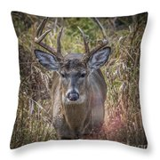 The One You Look For Throw Pillow