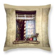 The Open Window Throw Pillow