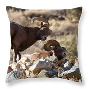 The Opposition Throw Pillow