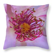 The Optimist Sees The Rose Throw Pillow