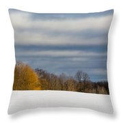 The Optimist's Edge Of Winter Throw Pillow