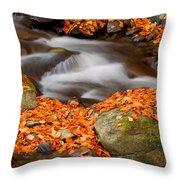 The Orange Stream Throw Pillow