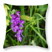 The Orchid And The Grasshopper  Throw Pillow