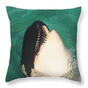 The Original Shamu Orca Whale At Sea World San Diego California 1967 Throw Pillow