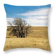 The Other Colorado Throw Pillow