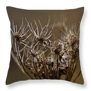 The Other Shades Of Fall Throw Pillow