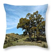 The Other Side Of Spain Throw Pillow