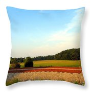 The Other Side Of The Tracks Throw Pillow