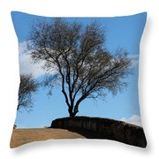 The Other Side Of The Wall Throw Pillow