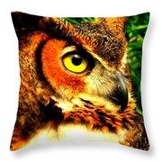 The Owl's Eye Throw Pillow
