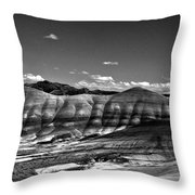 The Painted Hills Bw Throw Pillow