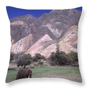 The Painters Palette Jujuy Argentina Throw Pillow