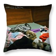 The Pampered Pup Throw Pillow
