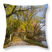 The Park Throw Pillow