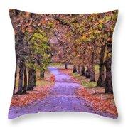 The Park In Autumn Throw Pillow