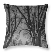 The Park In Black And White Throw Pillow