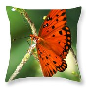 The Passion Butterfly Throw Pillow