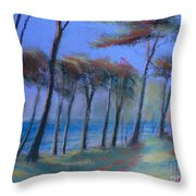 The Path At Lands End Throw Pillow