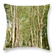 The Path Between The Trees Throw Pillow