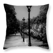 The Path In Nature Throw Pillow