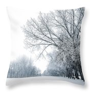The Path Of A Wandering Soul Throw Pillow