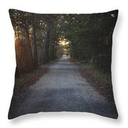 The Path Throw Pillow