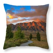 The Path To Beauty Throw Pillow