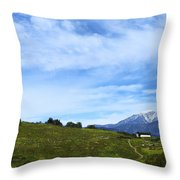 The Path To The Heart Throw Pillow